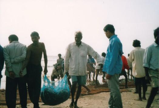 rybacy3-pelna siec